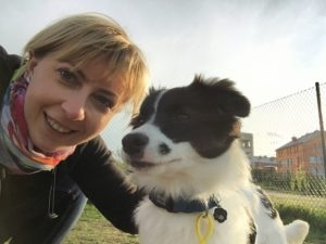 border collie with woman