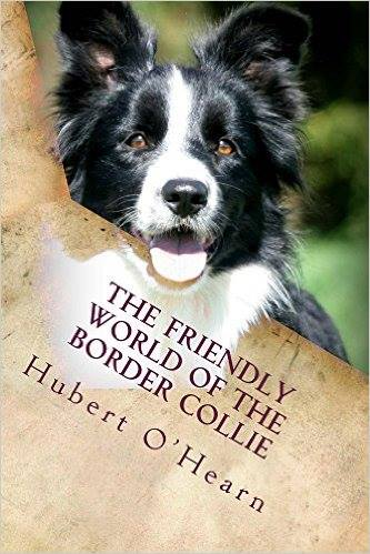 Border Collie Book