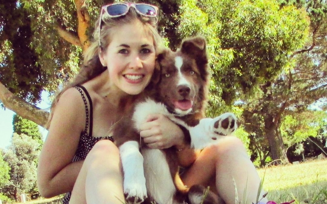 Border Collie Lead Aggression: Lauren and Cooper's Journey