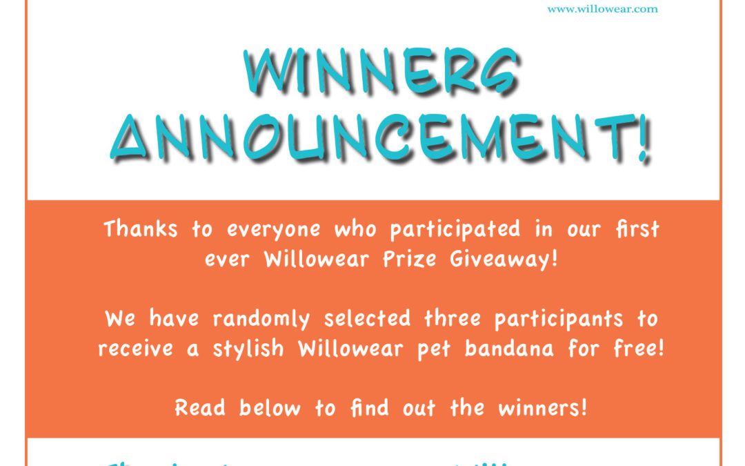 Willowear Prize Giveaway – Announcement of Winners