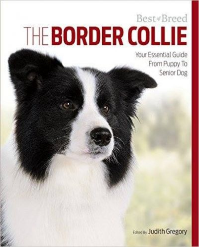 Border collie guide book