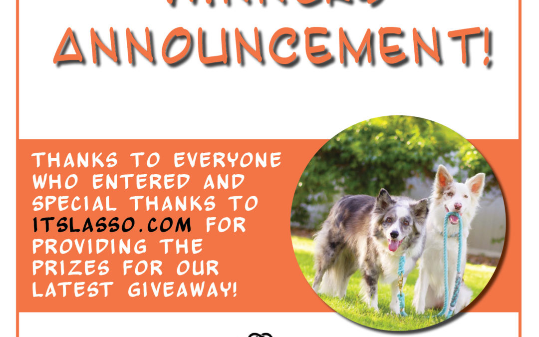 Announcing Our Lasso Giveaway Winners