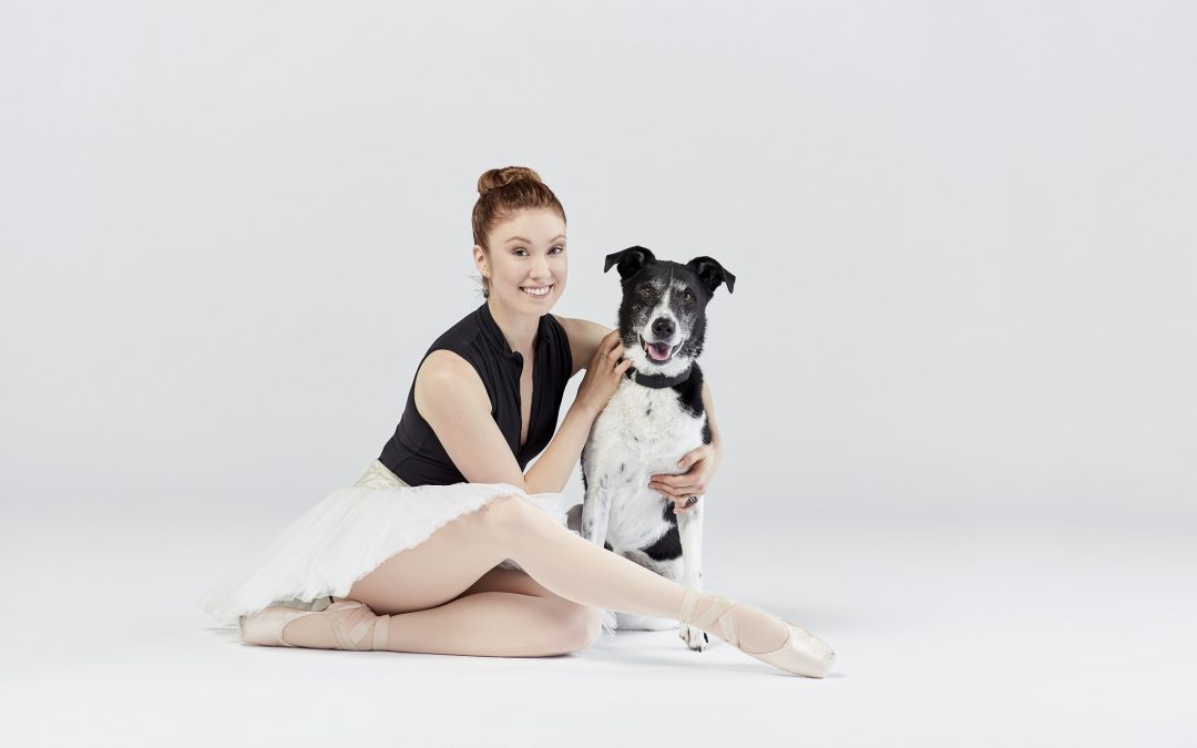 A Quick Q&A with Kelly and Ian from Dancers and Dogs