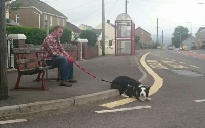 Coley's Rules – The Dog Who Brought Joy to a Small Town